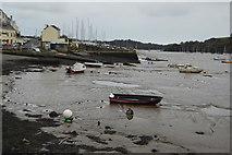 SX4358 : Mud, River Tamar by N Chadwick