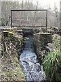 SK3187 : Rivelin Valley Trail, Rivelin Valley, Sheffield by David Hallam-Jones