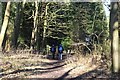 TM4769 : Hikers on the Suffolk Coast Path by John Myers