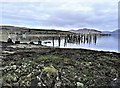 NS0767 : Old Steamer Pier, Port Bannatyne - Isle of Bute : Week 8