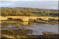 SD4774 : Leighton Moss in winter by Ian Taylor