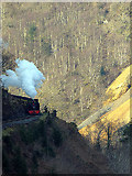 SN7377 : Vale of Rheidol locomotive No.8 comes into view by John Lucas