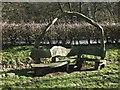 NY5563 : Rustic Seat by Jon Alexander
