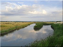 TQ7178 : Grazing marshes and fleet, south of Lower Hope Point by Stefan Czapski