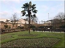 SJ8545 : Grosvenor Gardens by Jonathan Hutchins