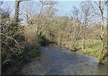 SX1061 : River Fowey, Restormel by Rob Farrow