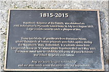 SX4853 : Napoleon Stone Plaque by N Chadwick