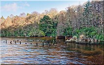 NH6037 : Old Boathouse Loch Ness by valenta
