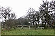 NZ2364 : Livestock pens, Castle Leazes by Mike Quinn