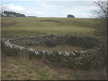 NY6407 : Andy Goldsworthy pinfold by Karl and Ali