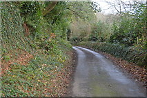 SX4975 : Old Exeter Rd by N Chadwick
