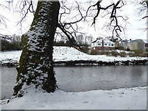 H4772 : Snow along the Camowen River, Cranny by Kenneth  Allen