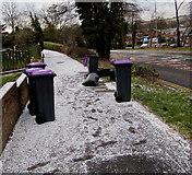 ST3096 : Purple-lidded wheelie bins, Edlogan Way, Croesyceiliog, Cwmbran by Jaggery