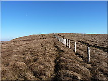 SJ0731 : Fenceline on Moel yr Ewig by Richard Law