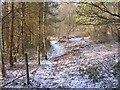 SO8584 : Snowy Path by Gordon Griffiths