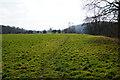 SO8166 : The Severn Way near Lyth Farm by Bill Boaden
