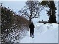 SJ1457 : A walk in the snow by Eirian Evans