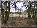 SO8694 : Railway path View in March by Gordon Griffiths