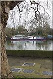 TQ1977 : River Thames, near Kew Bridge by Stephen McKay
