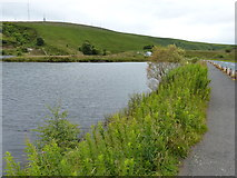 SD6715 : Ward's Reservoir near Belmont by Mat Fascione