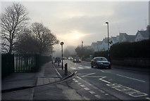SX9065 : Misty morning, Cricketfield Road, Torquay by Derek Harper