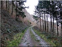 SN7079 : Forest road in Coed Dôl-fawr by John Lucas