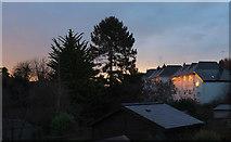SX9065 : Early sun in Torre by Derek Harper