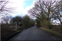 TL1320 : Chiltern Green Road & footpath by Adrian Cable
