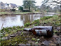H4772 : Discarded bottle, Cranny by Kenneth  Allen