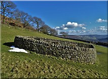 SK2276 : The Riley Graves near Eyam by Neil Theasby