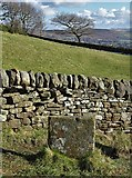 SK2276 : At The Riley Graves near Eyam by Neil Theasby
