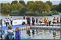 TQ2780 : The finish, The Serpentine Swim 2017 by N Chadwick