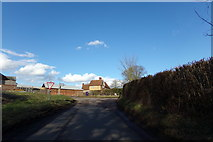 TL1624 : Parsonage Lane, King's Walden by Adrian Cable