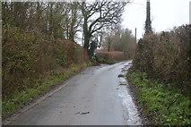 SY0087 : Bond's Lane by N Chadwick
