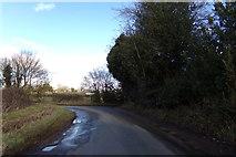 TL2026 : Little Almshoe Lane, Redcoats Green by Geographer