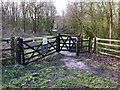 SJ8048 : Entrance to Podmore Woods by Jonathan Hutchins