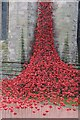 SO5039 : Weeping Window, Hereford Cathedral by Philip Halling