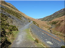 SJ0729 : Permissive path above the Nant y Llyn by Richard Law