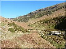 SJ0729 : Footbridge over the Nant y Llyn by Richard Law