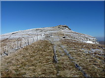 SJ0732 : Fences below the New Top of Cadair Berwyn by Richard Law