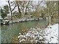 SU1329 : Harnham, River Avon by Mike Faherty