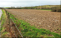 SW9775 : Field near Dinham Farm Caravan Park by Derek Harper