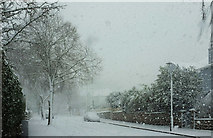 SX9065 : Parkhurst Road, Torre, in the snow by Derek Harper