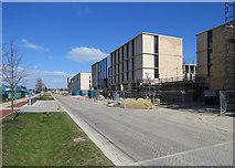 TL4259 : Eddington: building on Turing Way by John Sutton