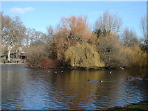 TQ2979 : Duck Island, St James's Park by Rudi Winter