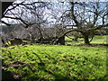 H5457 : Ruin, Glennageeragh by Kenneth  Allen