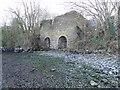 S6813 : Cheekpoint Lime Kiln by Redmond O'Brien