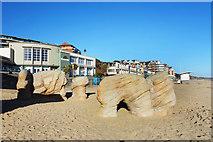 SZ1191 : Rocks on the Beach by Des Blenkinsopp