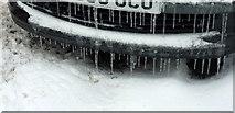 SX9065 : Motor icicles, Cricketfield Road, Torre by Derek Harper