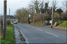 SX9888 : Road to Topsham by N Chadwick